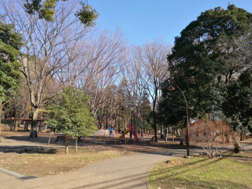 自然豊かで遊具も豊富な蘆花公園